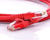 Cable de Internet de la red aislado en el fondo blanco Imagen de archivo libre de regalías