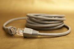 Cable de la red Fotos de archivo libres de regalías