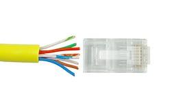Cable de la red Category5 Foto de archivo libre de regalías