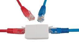 Cable de la red con el RJ45 Fotografía de archivo libre de regalías