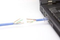 Cable de la red cortado Imagenes de archivo