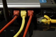 Cable de la red de área local  Fotografía de archivo libre de regalías