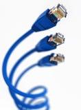 Cable de la red de ordenadores Imagen de archivo