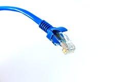 Cable de la red de ordenadores Imagen de archivo libre de regalías