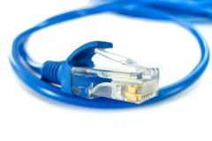 Cable de la red de UTP Foto de archivo libre de regalías