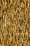 Cable de la red del marrón amarillo Imagen de archivo