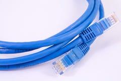 Cable de la red - remiendo-cordón foto de archivo