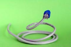 Cable de Lan Fotos de archivo
