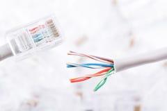 Cable de lan de Internet Fotos de archivo libres de regalías
