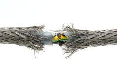 Cable de transmisión dañado rasgado Imágenes de archivo libres de regalías