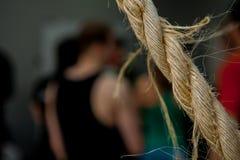 Cable del cordón del vínculo de la cuerda Imagen de archivo libre de regalías