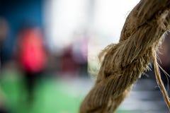 Cable del cordón del vínculo de la cuerda Foto de archivo