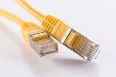 Cable del FTP Fotografía de archivo libre de regalías