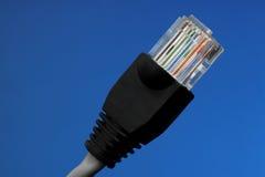 Cable del Internet Foto de archivo libre de regalías