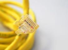 Cable del Internet Foto de archivo