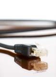 Cable del ordenador con la reflexión Imagenes de archivo