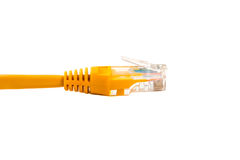 Cable head into head rj45,network,RJ45,plug. Isolated. Stock Photography