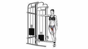 Cable Hip Adduction exercise stock video