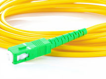 Cable LAN y conector Fotos de archivo