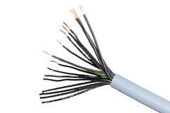 Cable with many wires Stock Image