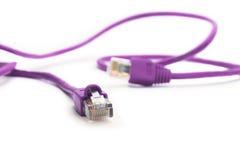 Cable púrpura de la red Imágenes de archivo libres de regalías