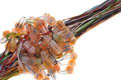 Cable rápido de la conexión Imagenes de archivo