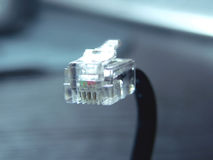 Cable with RJ-45 connector Stock Images