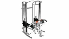 Cable Seated Rear Lateral Raise exercise. Anatomy of fitness and bodybuilding. Target muscles are red stock illustration