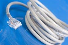 cable sieci white Zdjęcia Royalty Free