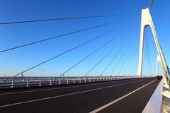Cable-stayed bridge. In northeast China royalty free stock photography