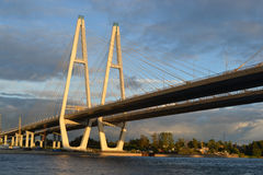 Cable stayed bridge at evening. Royalty Free Stock Photo