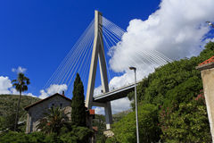 Cable stayed bridge with houses Royalty Free Stock Image
