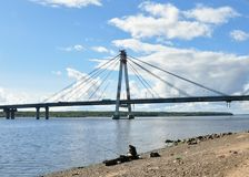 Cable-stayed bridge. Royalty Free Stock Image