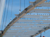 Cable Stayed Katy Trail Pedestrian Bridge royalty free stock photos