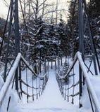 Cable suspension Bridge over Belokurikha river Stock Photography