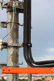 Cable on telephone poles. Stock Photos