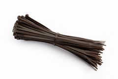 Cable tie in brown Stock Images