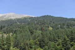 Cablecarril en las montañas Imagen de archivo libre de regalías