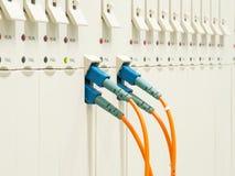 Cables ópticos de la fibra conectados Fotografía de archivo