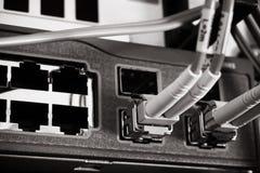 Cables ópticos de la fibra conectados con un interruptor Fotografía de archivo