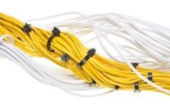 Cables amarillos y blancos eléctricos Imagen de archivo