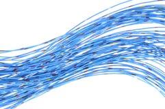 Cables azules de la red de telecomunicaciones Imagenes de archivo