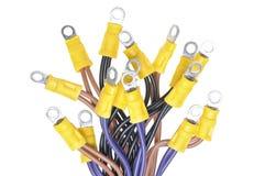 Cables con los terminales usados en sistema eléctrico del cableado Fotografía de archivo