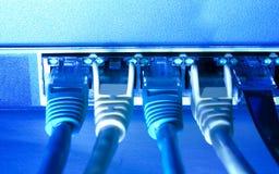 Cables de Ethernet imágenes de archivo libres de regalías