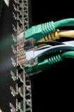 Cables de Ethernet fotos de archivo libres de regalías