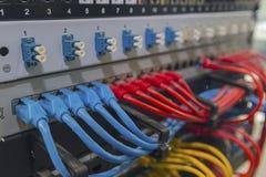 Cables de Ethernet conectados con el interruptor de Internet Imagen de archivo libre de regalías