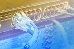 Cables de Ethernet de UTP Foto de archivo