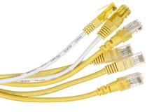 Cables de Internet imagen de archivo