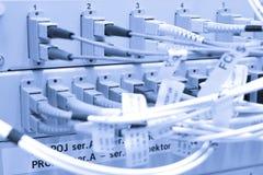 Cables de la fibra conectados con los servidores Imagenes de archivo