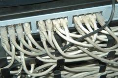 Cables de la red fotos de archivo libres de regalías